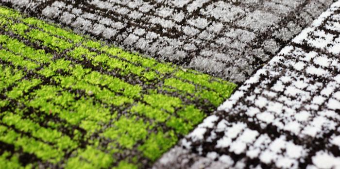 Razones para limpiar tus alfombras al menos una vez al a o - Alfombras faciles de limpiar ...